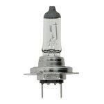 Glühlampe PHILIPS H7 (12V 55W) Vision Plus 30