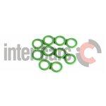 O-Ring, Klimaanlage DELPHI 0695276/0, 10 Stück