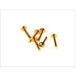 Flache 6-kantschraube M5x30 gold