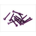 Schrauben Set 5x50 12 Stück violett