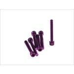 6-kantschraube M6x45 violett