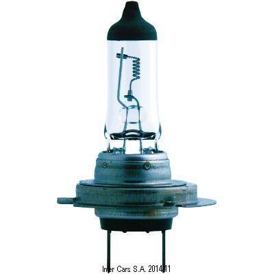 Glühlampe, Nebelscheinwerfer MasterDuty BlueVis...